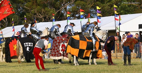 Jousting-Announcement-2.jpg