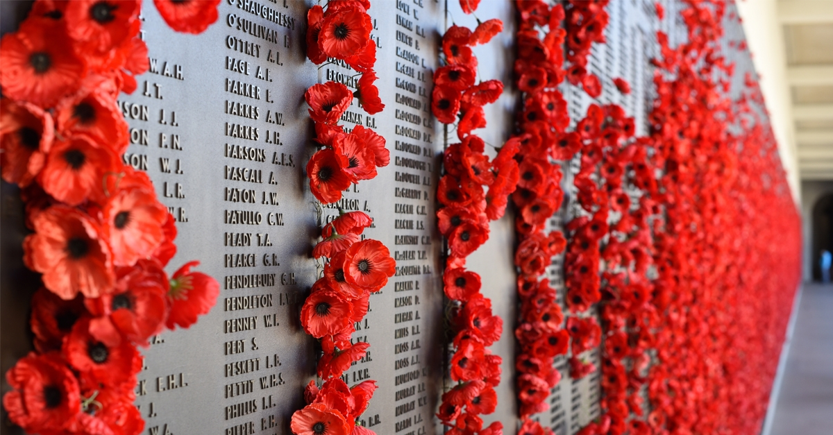 Photograph of Wall of Remembrance covered in poppies